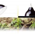 Exo Terra PT2052 Glow Light/ Reflector, Small, 14 cm de la marque Exo terra image 1 produit