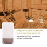 Farsler Sunrise Stimulation Wake Up Light Réveil avec 5 sons naturels, Touch Control 5 couleurs Modification de la luminosité de la luminosité 3 Lampe d'ambiance, USB Rechargeable Bedside LED Night Light Light de nuit pour les bébés, pour la chambre à image 2 produit