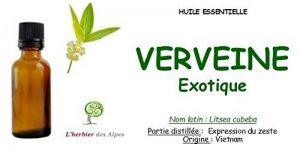 """Huile essentielle de Verveine exotique (100 ml). """"Litsea cubeba"""" de la marque L'herbier des alpes image 0 produit"""