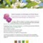 Les huiles essentielles - Vertus et applications de la marque image 1 produit