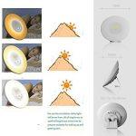Quelle luminothérapie choisir - choisir les meilleurs produits TOP 2 image 1 produit